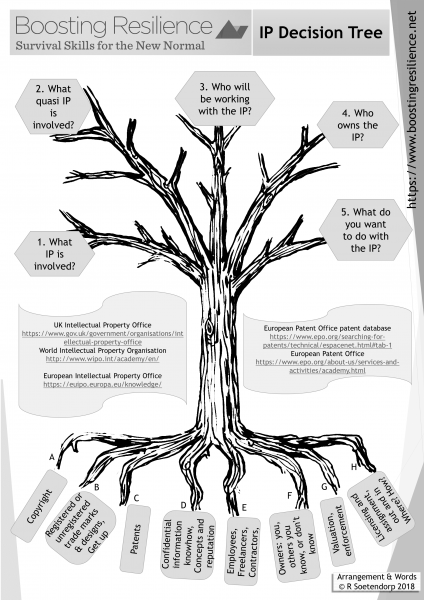 Boosting resilience IP Decision Tree graphic