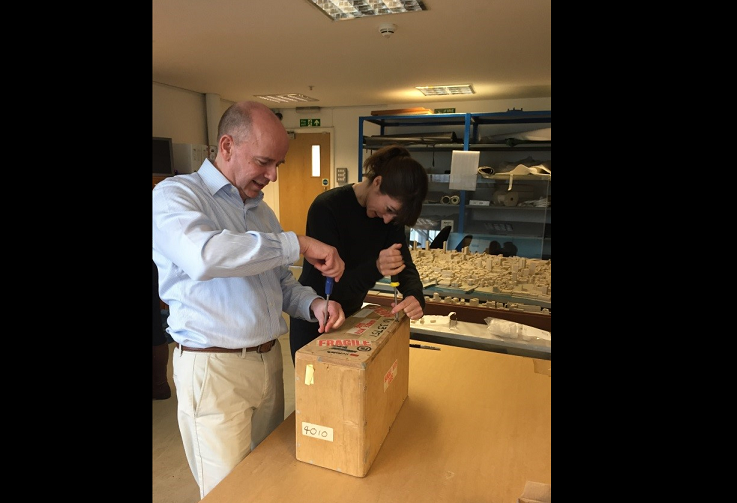 We're currently working towards an exhibition of the architectural schemes of Mies van der Rohe and James Stirling. On Monday I visited the RIBA archive store in Fulham, south west London, to see the exhibition team unpacking and inspecting the detailed site model of the Mies van der Rohe scheme, which has just arrived with us.