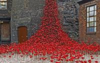 Photo of cermaic poppies cascading out the window of a stone building