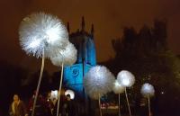 Photo of giant dandelion lights