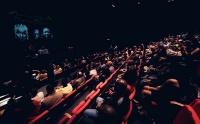 Photo of audience in dark theatre