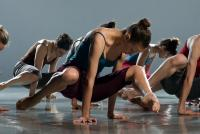 Photo of Batsheva Ensemble dancing
