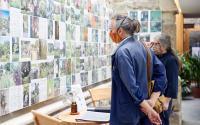 Garden Museum welcomes visitors back in August 2020