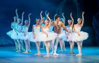 Production shot - swan lake