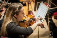 Photo of violin player