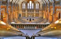 Photo of the Natural History Museum