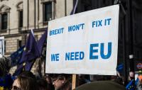 anti-Brexit banner being held up at a demo