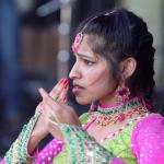 Image from Belfast Mela