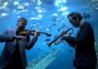 Image of musicians under water