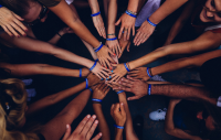 the bare arms of a group of mixed-race people stretching out hands on top of each other in a circle