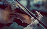 A close up of a hand and a violin