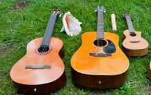Photo of guitars