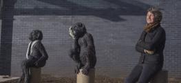 Image of chimp installation