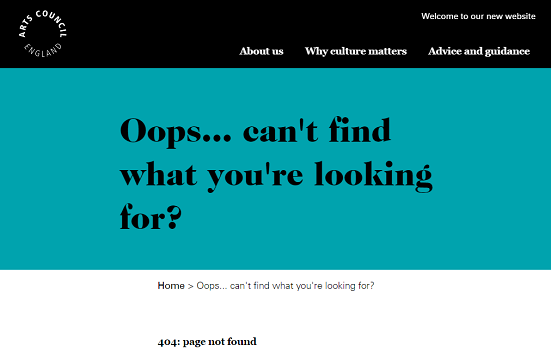 Screenshot of ACE website error message