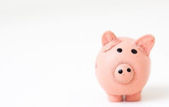 Photo of a piggy bank