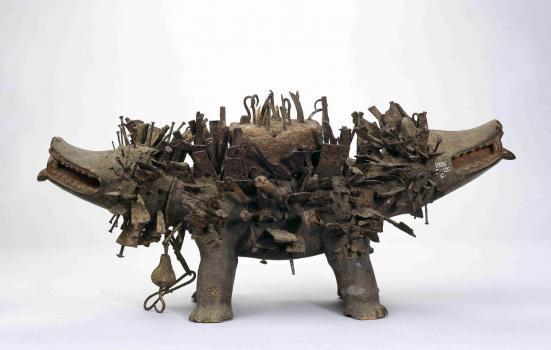 Image of Kozo the dog