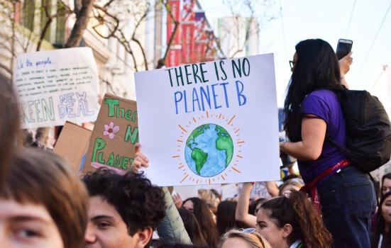 A photo of placards at a climate protest