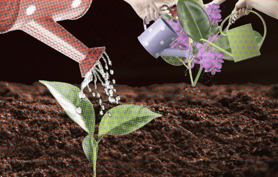 graphic of watering can watering a plant