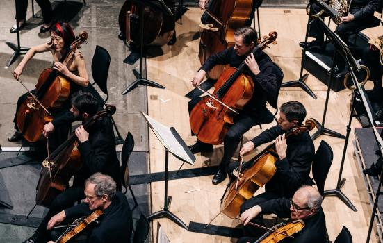 String section of the Scottish Chamber Orchestra