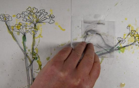 Still from murmuration of a hand over some drawn flowers