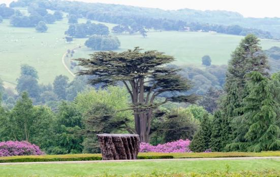 A photo of a sculpture surrounded by green fields