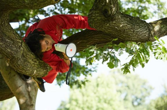 A person lying in a tree using a megaphone