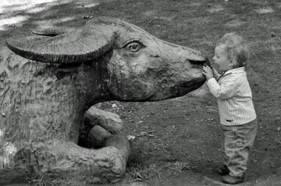 Photo of a toddler with bull statue