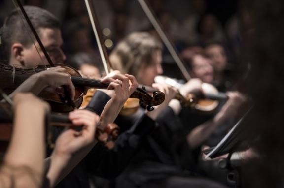 Photo of violins